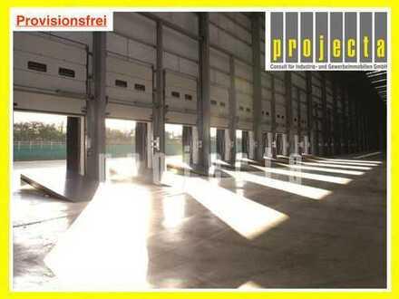 PROVISIONSFREI SICHERN: ca. 10.700 m² * Logistikanlage * WGK 2-fähig* viele Tore !!!