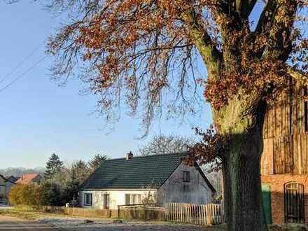 Schönes, geräumiges Haus mit drei Zimmern in Ostprignitz-Ruppin (Kreis), Kyritz