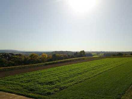 Direkte Feldrand-Lage mit super Aussicht ins Grüne.