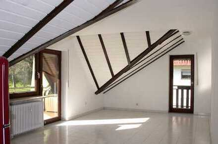 Gepflegte 1 Zimmer Dachgeschossswohnung mit 2 Balkonen,kleine Einbauküche u. Außenstellplatz