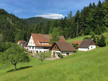 Bauernhof in sonniger und ruhiger Aussichtslage in Oppenau. Auch für Pferdehaltung geeignet !