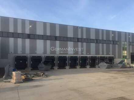 21.073 m² Cross-Dock | 74 Rampen | 10 m UKB