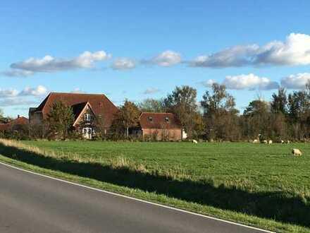 Großzügiges Haus in Nordseenähe
