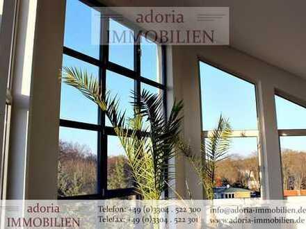 7,50€/m² - Extravagante, große Dachgeschosswohnung - Hohen Neuendorf
