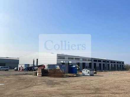 1.500 m² befestigte Freifläche in gut frequentierter Lage   Ideal für Großhandel
