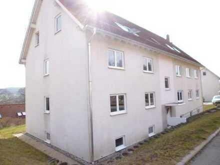 Wohnungspaket in Mechelgrün - EINZELVERKAUF MÖGLICH !