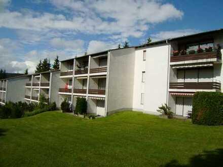 PROVISIONSFREI! Renovierte Wohnung mit Loggia und Stellplatz