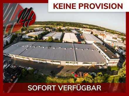 PROVISIONSFREI! Lager-/Produktionsflächen (760 qm) & Büroflächen (200 qm) zu vermieten