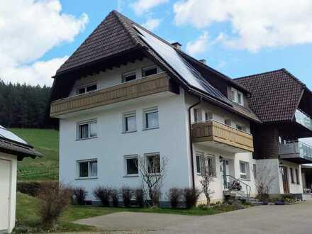 Helle, sanierte 3-Zi. Wohnung mit gutem Schnitt, Einbauküche & Balkon