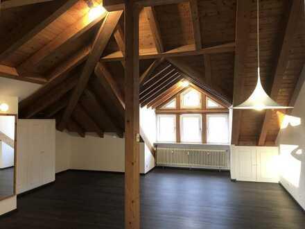 Helles Dachstudio, EBK, Bad, 2019 neu renoviert mit Blick auf Taunus, beste Lage FFM