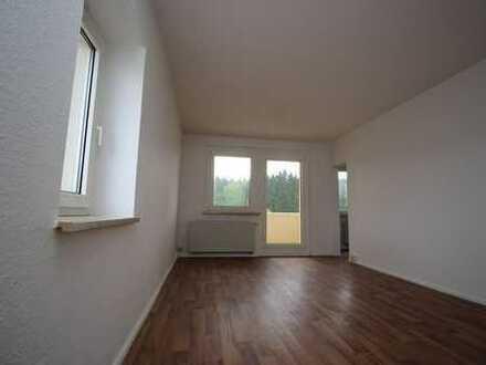 **Gemütliche 3-Raum Wohnung mit wunderschönem Blick über das Vogtland zu vermieten**