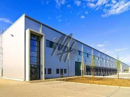 KEINE PROVISION ✓ RAMPE + EBEN ✓ Lager-/Logistik (12.000 m²) & Büro (500 m²) zu vermieten
