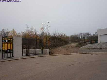 Das letzte unbebaute Gewerbegrundstück in Bad Bergzabern, Auf dem Viertel