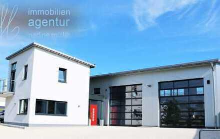 Neues Gewerbeanwesen mit Hallen und Büroräumen im Herzen der Hallertau