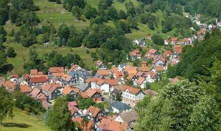Wohnen im Thüringer Wald - Gießübel