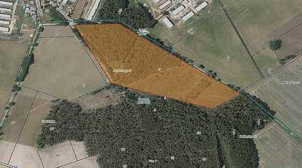 *P-013* 8 Ha Grundstück mit Waldfläche