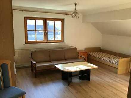 Modernisierte 1-Zimmer Möbiliertes Apartment mit EBK in Irsee