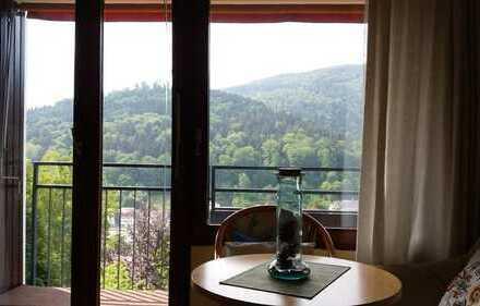Moebliertes MicroAppartment, ideal fuer Allergiker,Balkon, Schwimmbad,Einbauküche in Bad Herrenalb