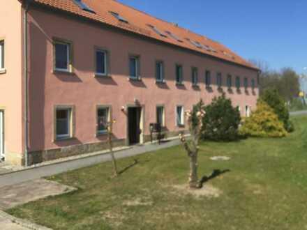 Gepflegte 1-Zimmer-Wohnung und EBK in Arnsdorf
