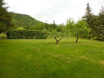 Frei ab Juni: Charmante DHH zum Wohnen + Arbeiten, großer Garten, große Garage in Baden-Baden