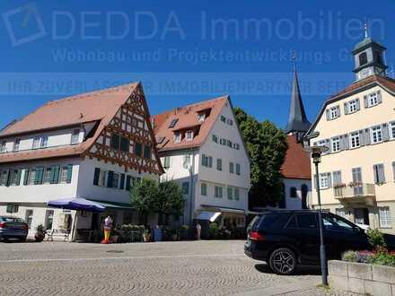 Moderne & helle 3 Zi.-Wohnung mit Altbaucharme im schönen Kirchheim/Neckar