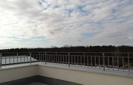Stiegenhaus mit Sonne pur. Erstbezug.