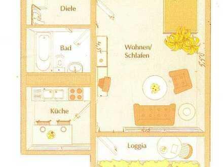 Wohnen am Wildpark in schöner 1 Zimmer Wohnung