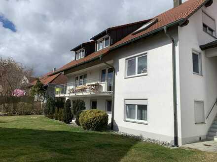 Gepflegte Wohnung mit zwei Zimmern sowie Terrasse und EBK in Erbach