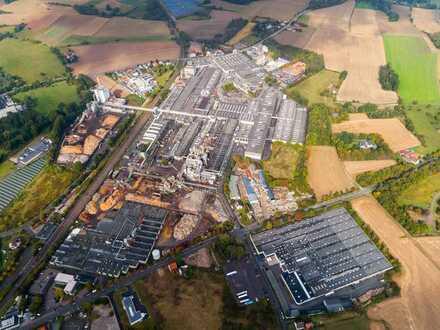 Produktions- und Lagerhalle in Horn-Bad Meinberg (zur Miete)