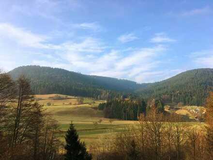 Grosszügiger Bauplatz mit unverbaubarem Schwarzwaldblick - von privat