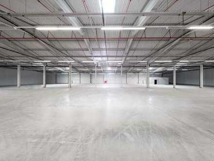 """""""BAUMÜLLER & CO."""" - ca. 5.000 m² Hallenfläche - ebenerdige Andienung + Rampe!"""