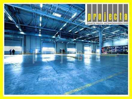* 3.400 m² HALLE * 3 TORE * 7 m UKB * AB SOFORT * 0151-510 16 422 *