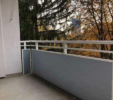 kernsanierte 3ZKBB, hell, ruhig, grün, Designerbad, zu Fuß zur Bergerstr. / neue EZB