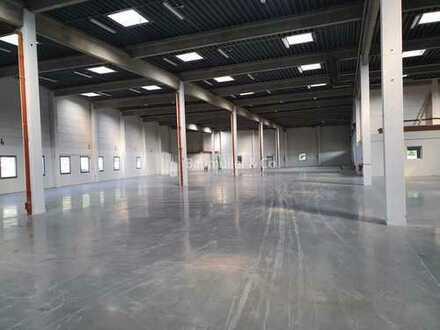 """""""BAUMÜLLER & CO."""" ca. 1.400 qm ebenerdige Hallenfläche - Büroflächen verfügbar"""