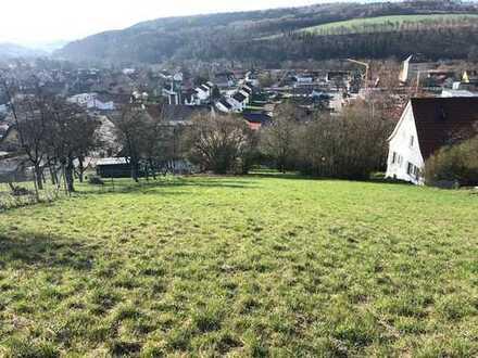 Bauplatz mit großem Grundstück und wundervoller Aussicht über Dörzbach