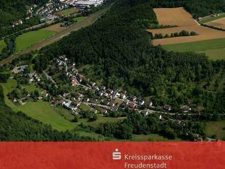 Wohnen und investieren im Grünen ! Horb-Isenburg