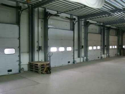 Bestlage!! - Kühl- und Logistikfläche mit Rampentoren und Logistik-Service