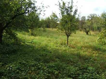 Nahe FR-Günterstal: Reizvolles Doppelhausgrundstück am Ortsrand mit Blick auf unverbaubare Wiesen