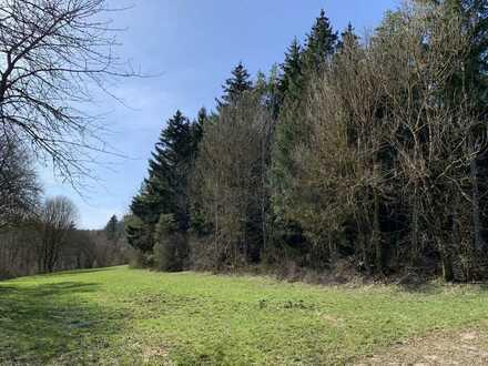 2,2 ha. Mischwaldgrundstück im Biosphärengebiet