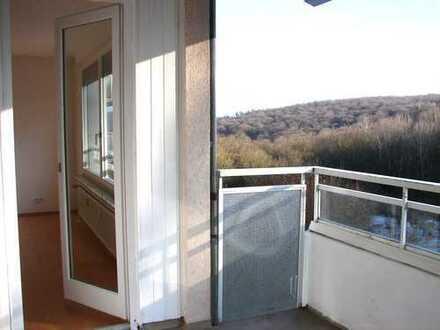 Schöne 4-Zimmer-Wohnung mit traumhaftem Ausblick in der Waldallee