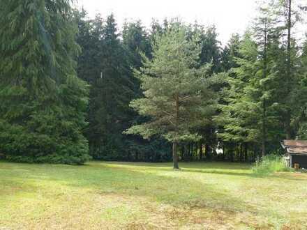 Baugrundstück mit herrlicher Aussicht in Waldrandlage!