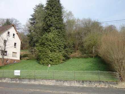 Attraktives und voll erschlossenes Baugrundstück in der Westerwaldgemeinde Raubach