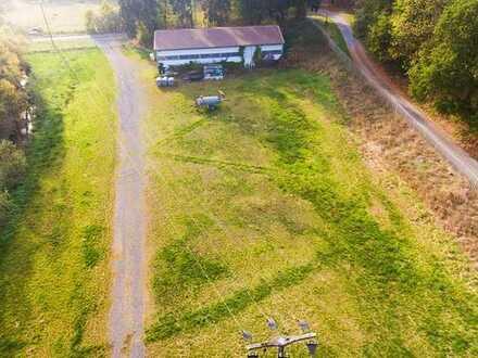 Eine interessante Gelegenheit! Landwirtschaftliches Areal mit Halle zu verkaufen!