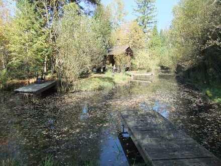 Freizeitgrundstück nähe Starnberger See mit romantischer Hütte und Weihern