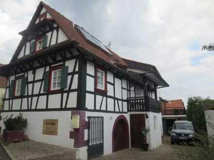 Vollständig renovierte 3,5-Zimmer-Wohnung mit Balkon und EBK in Schweigen-Rechtenbach