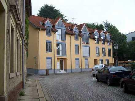 2- Zimmer Apartement mit Blick über Hohenstein-Ernstthal