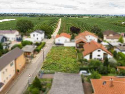 Attraktives Baugrundstück am Rand der Weinberge