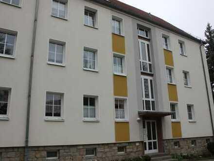 Schönes helles 3- Zimmer Appartment im grünen mit Stellplatz