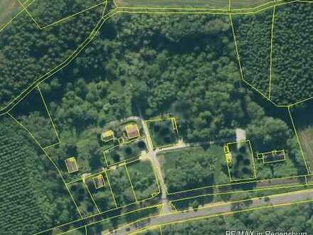 Großes Grundstück mit kleiner Siedlung gefällig? Vier Einfamilienhäuser und zwei Doppelhaushälften
