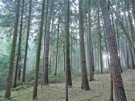 2 Hektar Wald zwischen Volkenschwand und Furth zu verkaufen